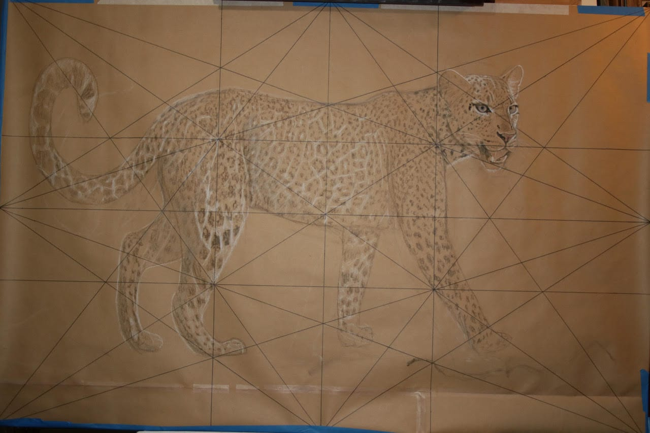 full-scale drawing